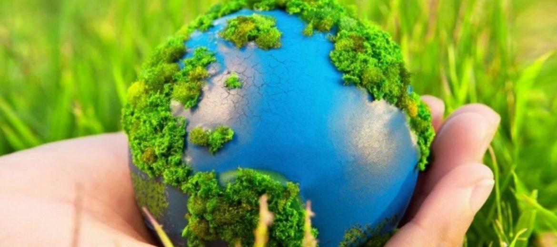Классный час по экологии